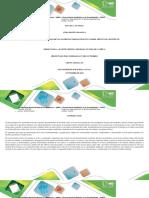 Formato Matriz de Trabajo Práctico Paso 3