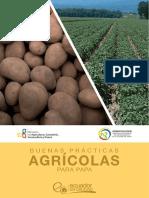 guia-papa-nueva.pdf