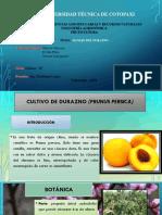 Fruticultura (1).pptx