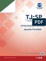 345612922-NEAF-Atual-Err-Apostila-PEdital-TJSP-pdf.pdf