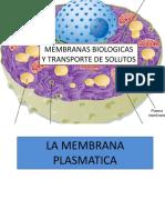 2 Membranas Biológicas y Transporte de Solutos