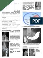 Aparato Digestivo - Patologia y Repaso Anatomia