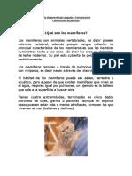 488947_15_Q0y5heYQ_guiaconstrucciondeparrafos.pdf