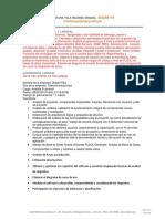 Modelo de CV Experis_RicardoVentura