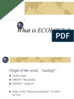 269832_ECOLOGI Ecosystem 2019