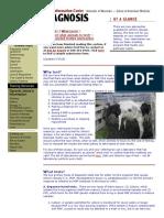Farm- Dairy_ Diagnosis - Johne's Information Center