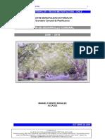 PLADECO 2006 peñaflor.pdf