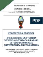 METODO GEORADAR -QUENALLATA.docx