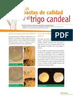 Calidad de la pasta.pdf