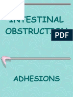 adhesionsandbands-110717011716-phpapp01-converted.pptx