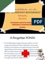 pp kesmas.pptx
