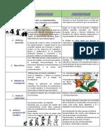 Ciencias Sociales Primer Ciclo