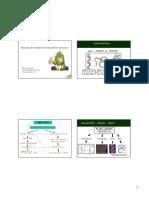 80712575-Aplicacao-de-marcadores-moleculares-na-agricultura.pdf