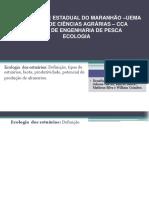 Universidade Estadual Do Maranhão –Uema Pdj Novo de Novo