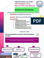 Biorremediacion Microbiana Ppt. Camila