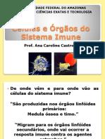 Aula2 Componentes Do Sistema Imune