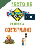 Proyecto de Educacion Vial 2016