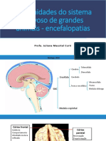 4 Enfermidades Do Sistema Nervoso de Grandes Animais - Encefalopatias [Recuperado]