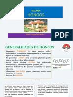 BOTANICA CRIPTOGAMICA- HONGOS