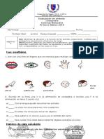 Prueba SEMESTRAL CIENCIAS NATURALES.doc