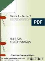 Fisica Tema 7