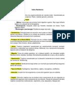 Terminologia (AutoRecovered)