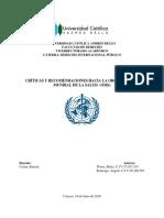 Derecho Internacional Público POR TERMINAR