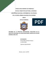 Informe Erickson Ingenieria Agroindustrial