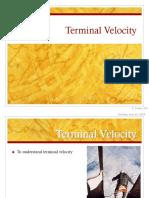 Terminal Velocity (1)