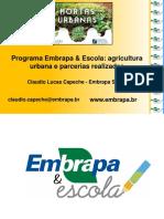 3 - Embrapa - Apresentação Elerj 25-06-2019