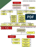 Vipa Mapa de Proceso y Organicramas