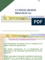 Reacciones REDOX Biológicas