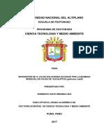 TESIS FINAL Y FORMATO MIRANDA.docx