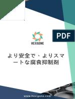 Brochure Japanese May2019