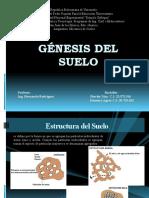 Génesis Del Suelo