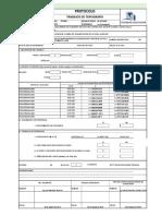 modelo para protocolos para obra