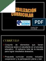 flexibilizacioncurricular1-110626204809-phpapp01