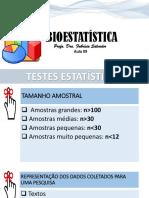 Estatística Analítica