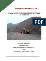 Inspección minero