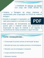 Aula Liofilização CONTROLE MO Flavia Final