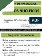 Acidos Nucleicos Area Cta 4 Grado Ebr Se