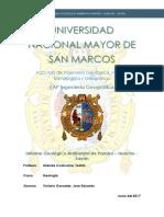 Informe Paraiso Huacho Sayan