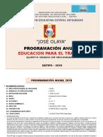 1 Programacion Anual - 2019 - Quinto