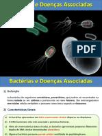 Aula Bacterias e Doencas Associadas
