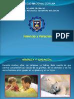 11.Herenia y Variación