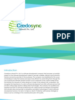 Credosync Infosoft Company Profile
