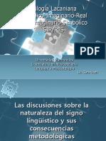 Trilogía Lacaniana SIR-RIS - Olvido
