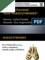 Anatomía Funcional.pptx