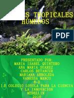Presentacion Bosque Tropical