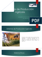 Sistemas de Producción Agrícola.pptx